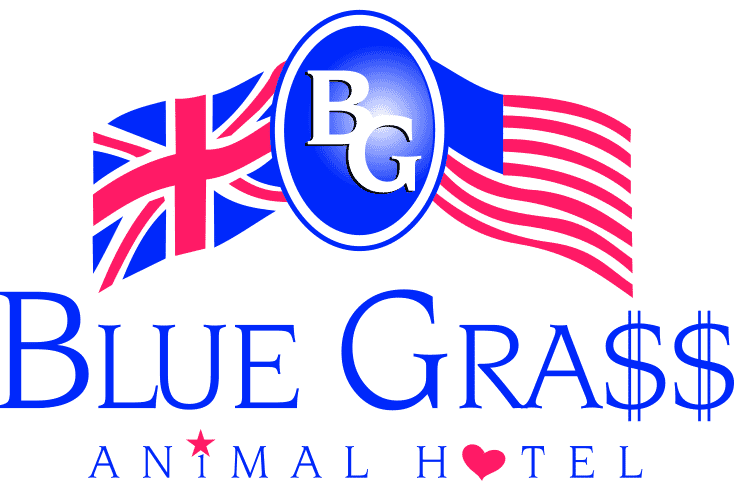 Blue Grass Animal Hotel - Kennels Cheshire